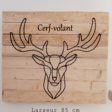 ACCEUIL-CERF